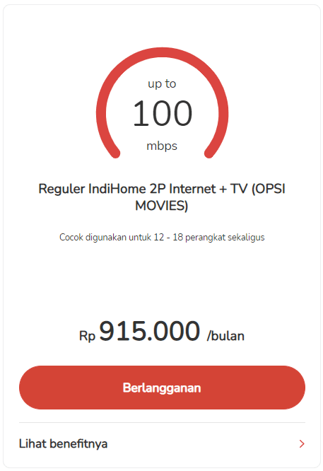 100mbps-p.png
